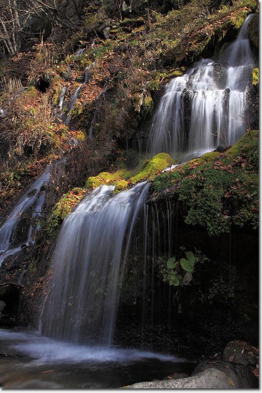Doryu_fall_2854_20121114