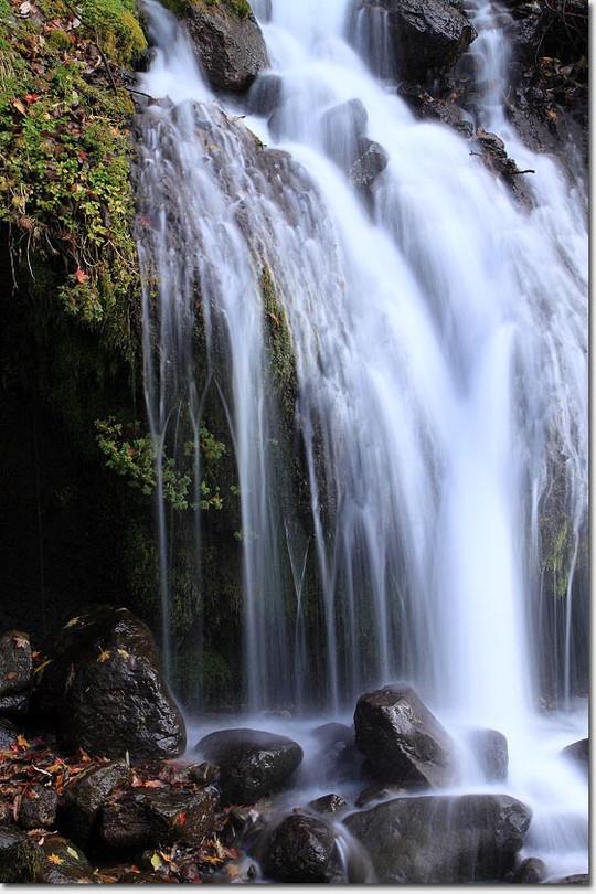 Doryu_fall_2868_20121114