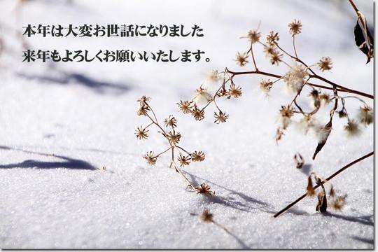 Img_3286