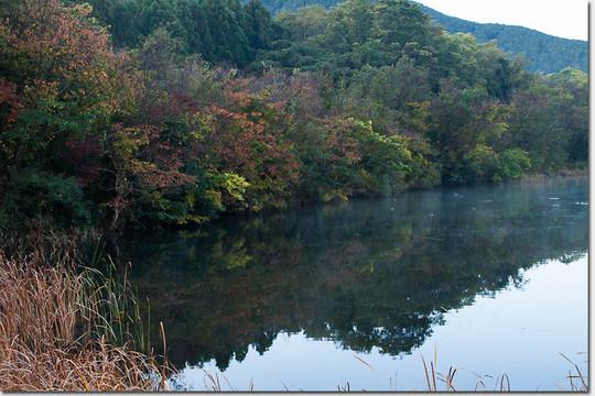 Nagaoike_1605_20141122