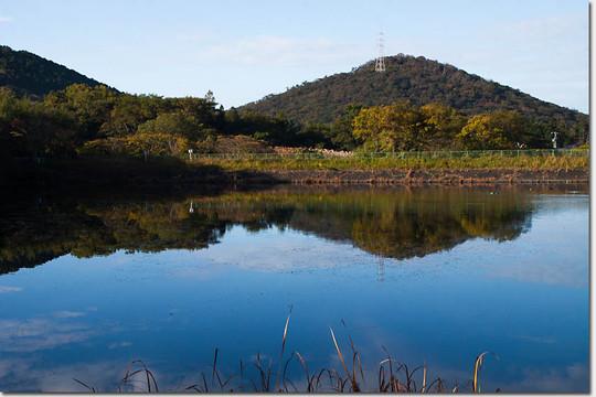 Nagaoike_1645_20141122