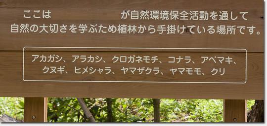 Kagikazura_9434_20160621